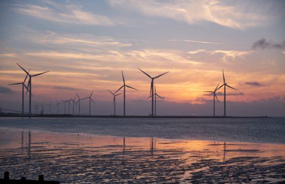 Windparks stark wie Atommeiler