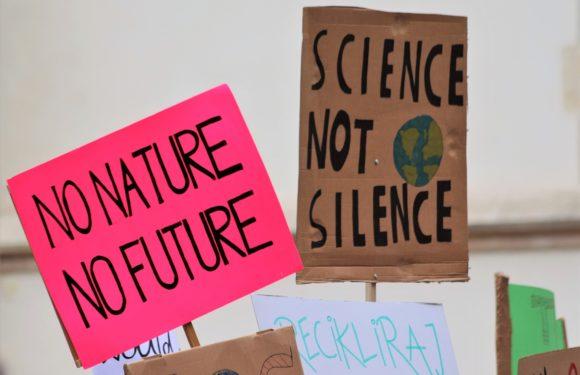 Solidarisierung 'Fridays For Future'